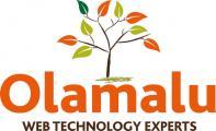 new olamalu logo outlined web